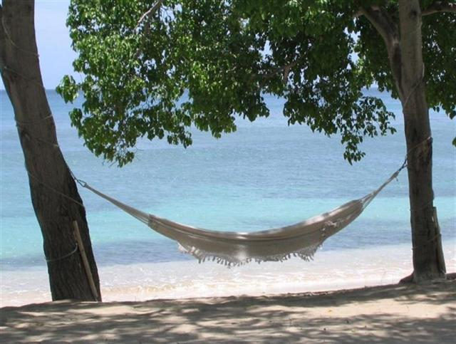 Hammock (Small)
