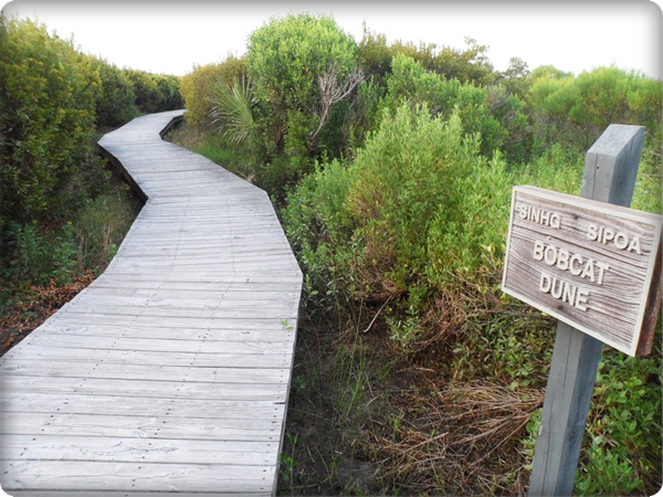 Seabrook Island Boardwalk