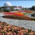 Epcot Flower Festival